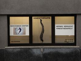 HERWIG VERGUCHT KINESITHERAPEUT- Mechelen - Werkdomeinen